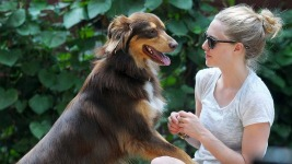 Amanda Seyfried: Βόλτα με το σκύλο της Finn..