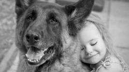 Δείτε πώς κάνει ένα κοριτσάκι όταν της κάνουν δώρο οι γονείς της σκυλάκι!
